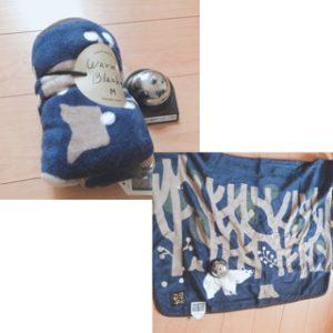 パティス2020年福袋中身ブランケット
